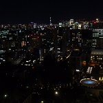 From 36th Floor Room with Skytree