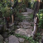 path to casita