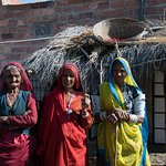 Foto di Bishnoi Village Safari Private Tours
