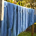 Hanging out to dry...