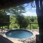 Londolozi Varty Camp Foto