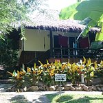 Photo de Shiralea Backpackers Resort