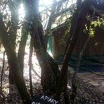 The morning at waker camp