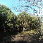A morning at waker mara camp