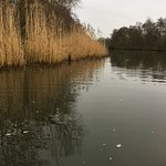 Our day on the Broads