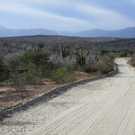 Photo of Baja Sierra Adventures- Day Tours