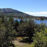Foto di Complejos del Lago Alumine, Villa Pehuenia