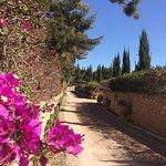 Le Jardin des Douars Photo