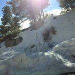 Photo of Mt. Lemmon Scenic Byway