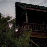 Thunzi Bush Lodge Foto