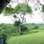 Photo de St Lucia Ecolodge and Conference Centre