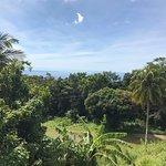 Etoile De Guadeloupe