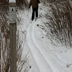 Hiking trail - -snowshoeing and Cross Country skiing permitted