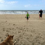 Foto de Tranquility Bay Beach Retreat