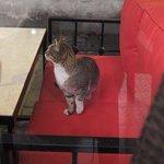 Photo de Serbethane Cafe&Restaurant
