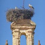 Foto de Hotel Convento Aracena & Spa