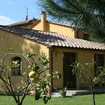 Photo of Pisa Holidays Bed & Breakfast