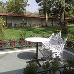 Cafe overlooking gardens