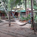 Photo de Palawan Village Hotel