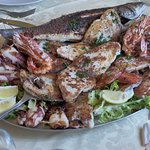 Seafood Platter with Grilled Bass, Tuna, Calimari, White Fish, etc.