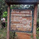 Karura Forest Nairobi