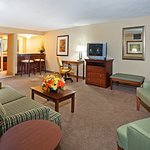 Holiday Inn Pigeon Forge Foto