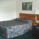 Photo of Red Carpet Inn Coxsackie