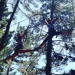 Fun up in the trees!!