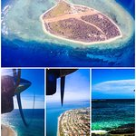 View from plane of Lady Elliot Island