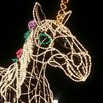This was one of the light sculptures at the river of lights. So many beautiful lights.