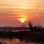 Sunrise at Merced Wildlife Refuge