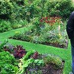 Edible and shareable garden