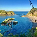 Photo de Otamure Bay (Whananaki) Campsite