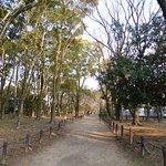 鶴舞公園 21