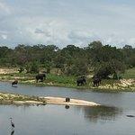 Photo de Chitwa Chitwa Private Game Reserve