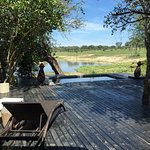 Photo of Chitwa Chitwa Private Game Reserve