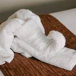 An elephant of towels