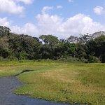 Photo of Monkey Island