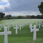 Somber park full of crosses