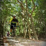MTB single tracks in the dry tropical forest