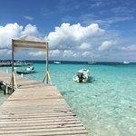 Goff's Caye Photo