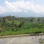Photo de Ijen Resort & Villas