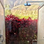World's most beautiful shower view""