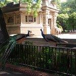 Photo de Zoo Buenos Aires
