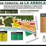 Parque forestal de La Arbolada (Aldeamayor de San Martín): plano ilustrativo.
