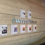 The Westin Ottawa Foto