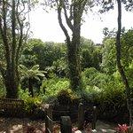 Eden Memorial Gardens