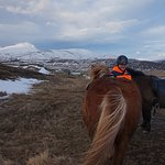 Icelandic horses and our lovely guide!
