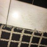 Frayed Carpet
