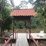 Photo of Guacamayo Ecolodge